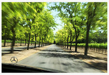 """13x19"""" Winery MERCEDES ART Giclee Signed Photograph Benz Sterling Vineyards NAPA"""
