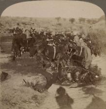 Taking Artillery Horses to Water Great March to Pretoria. Boer War Stereoview