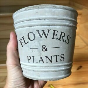 """""""Flowers and Plants"""" Rustic Funky Succulents Cacti Flowers Plants Pot Container"""