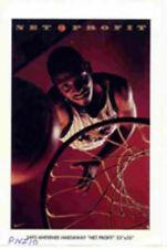 "Anfernee Hardaway - ""Net Profit"" -Vintage 1995  Nike Poster pni10"
