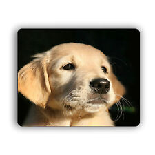Golden Retriever Puppy Glamour Shot Computer Mouse Pad Pets Dogs