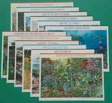 Complete Set of 12 NATURE OF AMERICA Sheets US Postage Stamps. Sc # 3293 - 4474