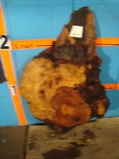 "#9271  1 15/16"" THICK  cherry burl live edge slab"