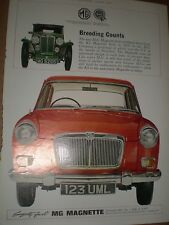 Motor car MG Magnette advert Breeding Counts 1964 ref AY