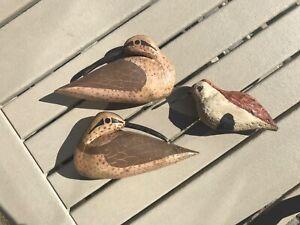 Shorebird decoys