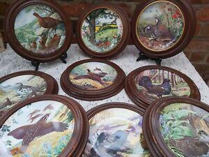 9 x Royal Grafton The Braithwaite Game Bird Collection plates wooden framed