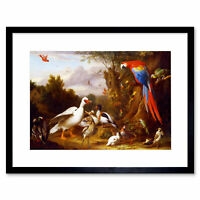 Painting Nature Animal Birds Bogdani Macaw Duck Parrot Framed Print 12x16 Inch