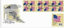 US Scott #4191, First Day Cover 8/15/07 Washington Booklet Pane Old Glory
