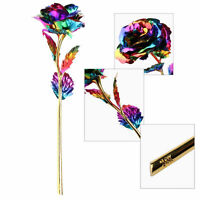 Best Gift Multi Color Plated Rose Romantic Valentine's Day Mother Lover Friend