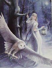 Snow Lady/ Fantasy Owl Canvas Pictue/ Mystic