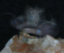 Ring Talisman spell kit ritual haunted become irresistible to women woman ladies
