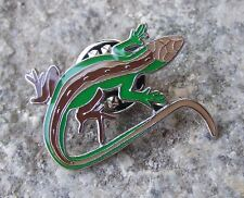 Pretty Green Brown Long Tailed Lizard Wildlife Small Reptile Brooch Pin Badge