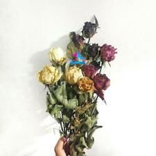 garing mawar apik untuk hiasan and dekor flower cute