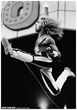 Poster VAN HALEN - Jump - David Lee Roth 1980 ca60x85cm 15428