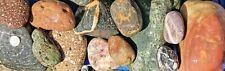 30 lbs Lot #1 Assorted Size Colorful River Rocks Decorative Landscape Aquarium