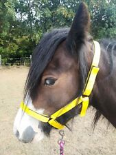 "Bright Yellow. Pony size ""Westernway"" Field Safe Head collar."