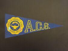 New listing American Community School Buenos Aires Argentina 1960'S Original Pennant Flag