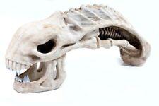 Xenomorph Alien Skull