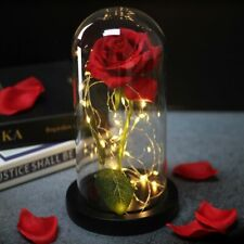 Beauty And Beast Rose In Flask Led Gift Valentines Day Mother's Best Dome