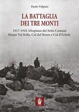 La battaglia dei tre monti. 1917-1918 Altopiano dei Sette Comuni, Monte Val Bell