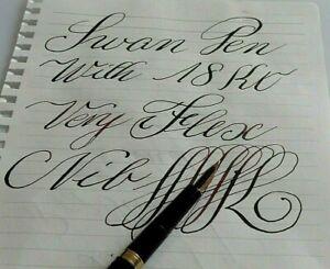 Swan pen 18K FLEX nib CLEAN