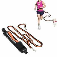 Hands-free Reflective Dog Leash for Walking Jogging Running Hiking with Pouch