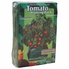 New Forearm Forklift Tomato Planting Pack 2 plants, Gardening Outdoors