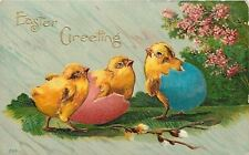 Easter~Fat Yellow Chicks Stuck in Pink & Blue Eggs~Spring Tree~Emboss~1910 PC