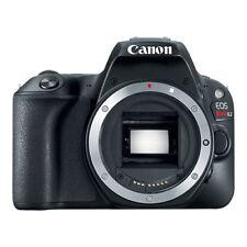 Canon EOS Rebel SL2 24.2MP Digital SLR Camera Body