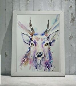 New Original signed certificated watercolour nature art painting of a Stag deer