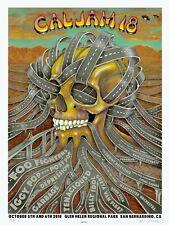 Mint & Signed Foo Fighters Iggy Pop Emek 2018 Cal Jam Poster 31/600