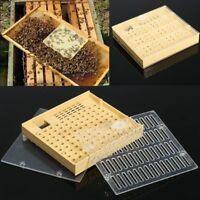 Königin Aufzucht System Cupkit Capularve Imkerei Queen Rearing Beekeeping Box