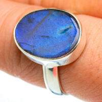 Labradorite 925 Sterling Silver Ring Size 8.75 Ana Co Jewelry R46493F