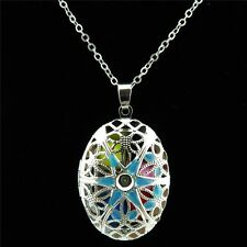 Dull Silver Alloy Enamel Blue Flower Oval Diffuser Photo Picture Locket Necklace