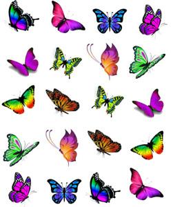 Vivid Butterflies Waterslide /Water Transfer Nail Decals/Nail art