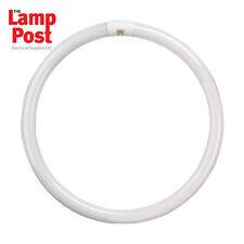 22 Watt 22W Round Fluorescent Tube - Crompton Branded