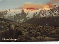 Fantasie - Cpsm - Leben in Montagne