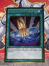 Carte Yu Gi Oh DESTRUCTION TERRESTRE PGL2-FR075