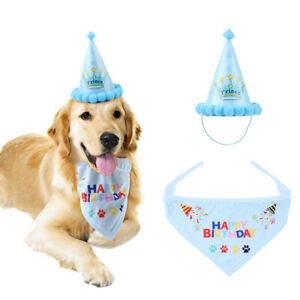Pet Dog Cat Happy Birthday Hat Headwear Bandana Neckerchief Party Decor Blue UK