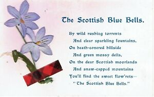 VINTAGE POSTCARD. THE SCOTTISH BLUE BELLS. GOOD CONDITION. 1908.
