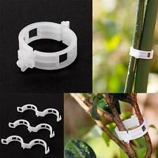 50X clip plastica fascette legare piante ortaggi pomodori giardino giardinaggio