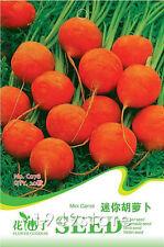 1 Bag 20 seed Mini Carrot Vegetable seeds pack C078