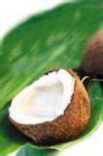 Flavor Oil 1/4 oz Coconut Lip Balm Body Oils