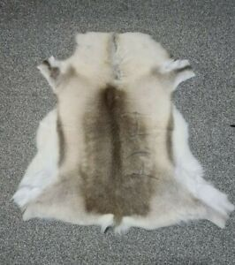 Large Genuine Scandinavian Reindeer Hide Rug Animal Skin Nordic Chair Covering 3