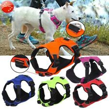 Puppy Dog Cat Reflective Nylon Soft Adjustable Harness Pets Walk Out Chest Vest