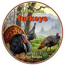 80 'How to Raise Turkeys' Guides & Manuals on CD plus 500 Turkey Recipes