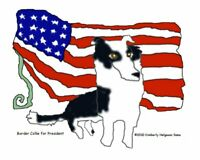 BORDER COLLIE for PRESIDENT Collectible Dog Pop Art Print 8x10 Signed by KSAMS