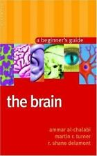 Oneworld Beginners' Guides: The Brain : A Beginner's Guide by Ammar Al-Chalabi,