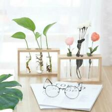 Hydroponic Glass Test Tube Flower Pot Plant Vase Terrarium Container Decor AU