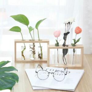 Hydroponic Glass Test Tube Flower Pot Plant Vase Terrarium Container Decors
